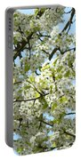 Blossoms Whtie Tree Blossoms 29 Nature Art Prints Spring Art Portable Battery Charger