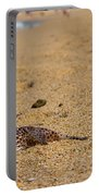 Blowfish Offshore  Portable Battery Charger