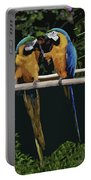 Blue And Gold Macaw 1 Portable Battery Charger