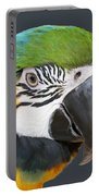 Blue And Gold Macaw Digital Freehand Painting Portable Battery Charger