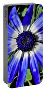 Blue And White African Daisy Portable Battery Charger