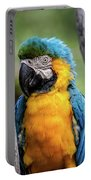 Blue And Yellow Macaw Portrait  Portable Battery Charger