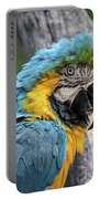 Blue And Yellow Macaw Portable Battery Charger