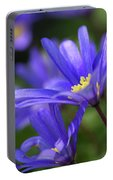 Blue Anemone  Portable Battery Charger