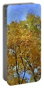 Blue Autumn Sky Portable Battery Charger