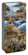 Seeing Blue At The Beach Portable Battery Charger by Karen Zuk Rosenblatt