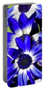 Blue Beauties Portable Battery Charger