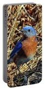 Blue Bird In The Grass Portable Battery Charger