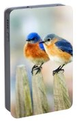 Blue Birds Portable Battery Charger