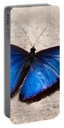 Blue Buttterfly Portable Battery Charger