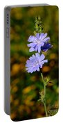 Blue Chicory 2 Portable Battery Charger