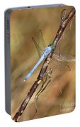 Blue Dragonfly Portrait Portable Battery Charger