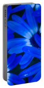 Blue Daisies, Medford Oregon Portable Battery Charger