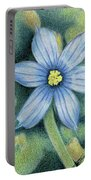 Blue Eyed Grass - 1 Portable Battery Charger