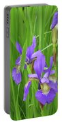 Blue Flag Iris-1  Portable Battery Charger