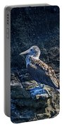 Blue-footed Booby Prize Portable Battery Charger