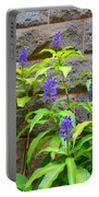 Blue Ginger At The Wall Portable Battery Charger