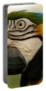 Blue Gold Macaw South America Portable Battery Charger