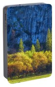 Blue Granite Portable Battery Charger