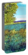 Blue Grass Sunny Day Portable Battery Charger