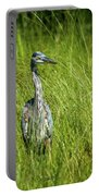 Blue Heron In A Marsh Portable Battery Charger