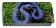 Blue Hognose Portable Battery Charger