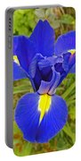 Blue Iris Beauty Portable Battery Charger