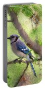 Blue Jay 1404 Portable Battery Charger