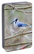 Blue Jay Portable Battery Charger by George Randy Bass