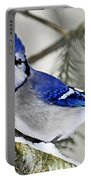Blue Jay In Winter Portable Battery Charger