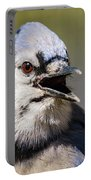 Blue Jay Portrait Portable Battery Charger