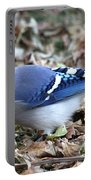 Blue Jay With A Full Mouth Portable Battery Charger