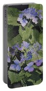 Blue Lace Portable Battery Charger