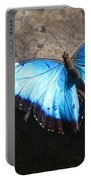 Blue Morpho #2 Portable Battery Charger