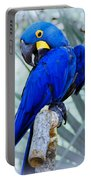 Blue Parrot Portable Battery Charger
