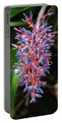 Blue Red Plant Portable Battery Charger