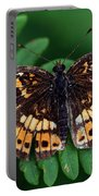 Blue Ridge Butterfly Portable Battery Charger