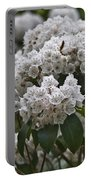 Blue Ridge Mountain Laurel Portable Battery Charger