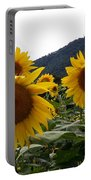 Blue Ridge Sunflowers  Portable Battery Charger