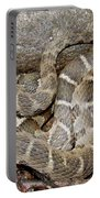 Montreat Water Snake Portable Battery Charger