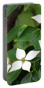 Blue Shadow Dogwood Flowers Portable Battery Charger