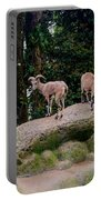 Blue Sheep Portable Battery Charger