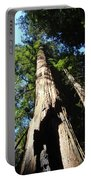 Blue Sky Big Redwood Trees Forest Art Prints Baslee Troutman Portable Battery Charger