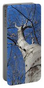 Blue Sky Beech Tree Portable Battery Charger