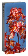 Blue Sky Fall Tree Leaves Landscape Art Prints Baslee Troutman Portable Battery Charger
