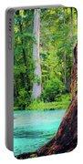 Blue Springs Portable Battery Charger