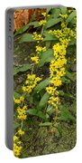 Blue-stemmed Goldenrod - Solidago Caesia Portable Battery Charger