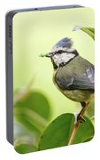 Blue Tit With Caterpillar Portable Battery Charger