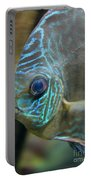 Blue Tropical Fish Portable Battery Charger