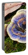 Blue Turkey Tail  Portable Battery Charger